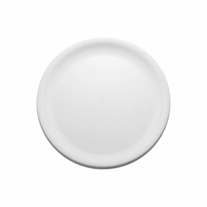 "Picture of MUSKAN ROUND PLATE 11"" (WHITE)"