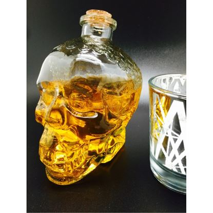 Picture of DN SKULL BOTTLE 800ML