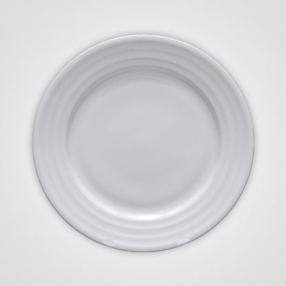 Picture of BONE-CHINA GALAXY PLATE 10""